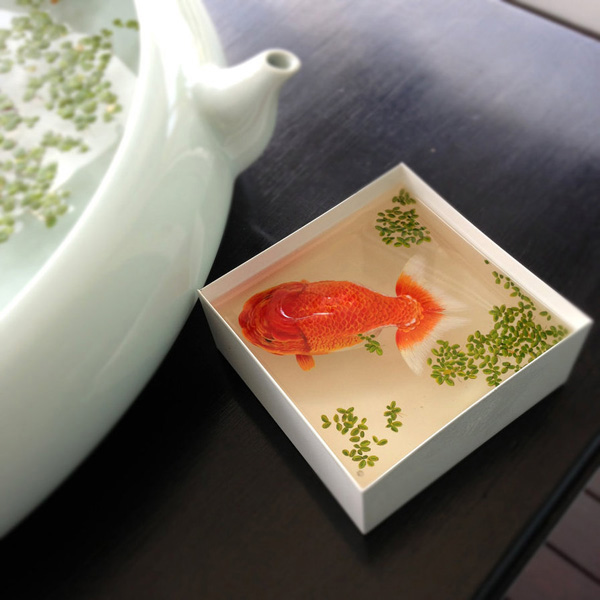 3D-Fish-Paintings (18)