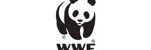 mascot logo2