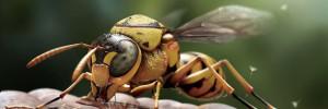 vespid-insect-3d-model_5701
