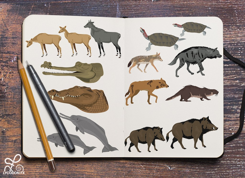 rare wildlife illustrations animals lycodonfx