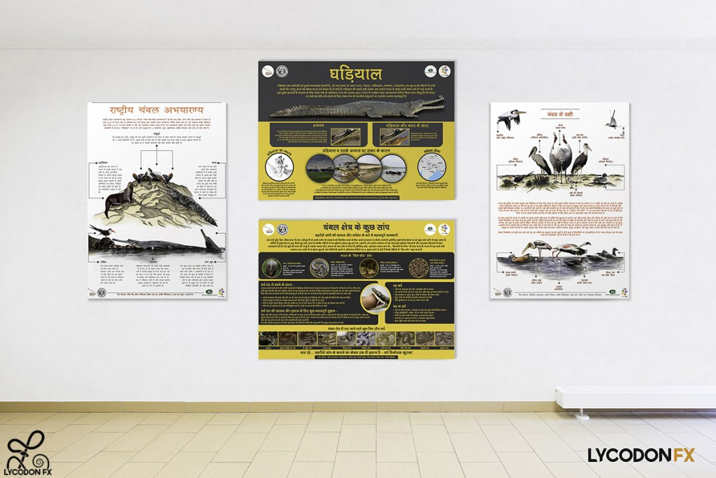 animal wildlife conservation poster environment eductaion design agency nature art (3)