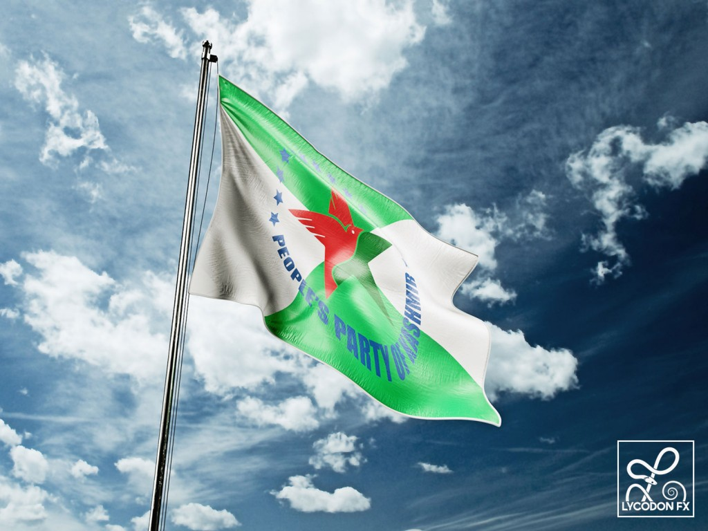 political party flag design